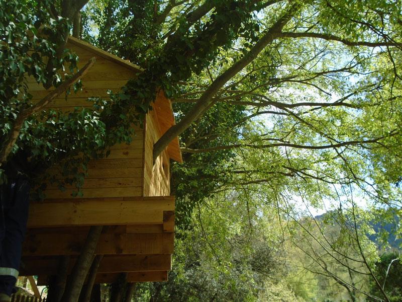 Can-Castellvi-la-caseta-del-arbre.-003
